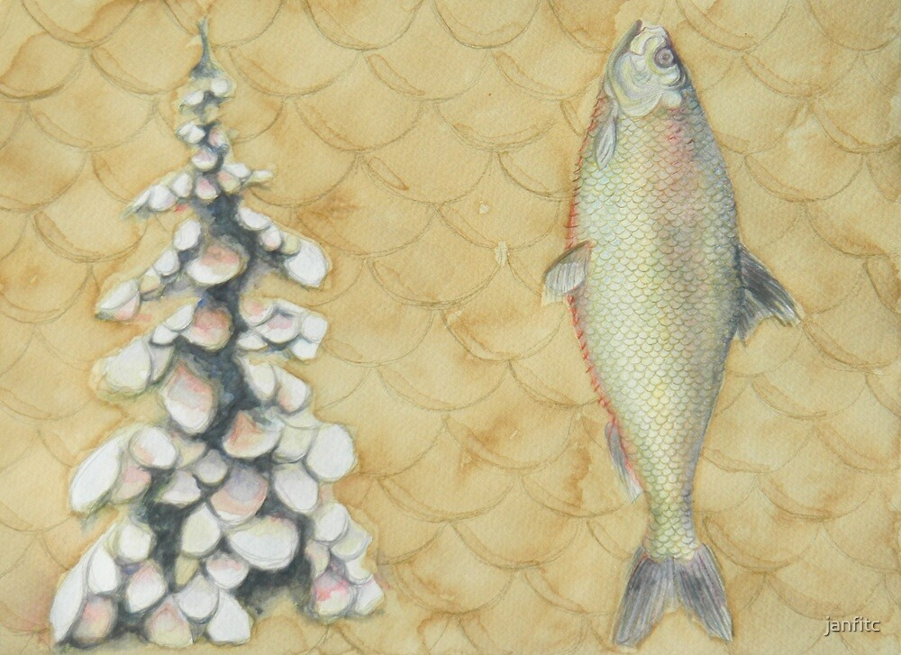 Trout, Pine, Scale by janfitc