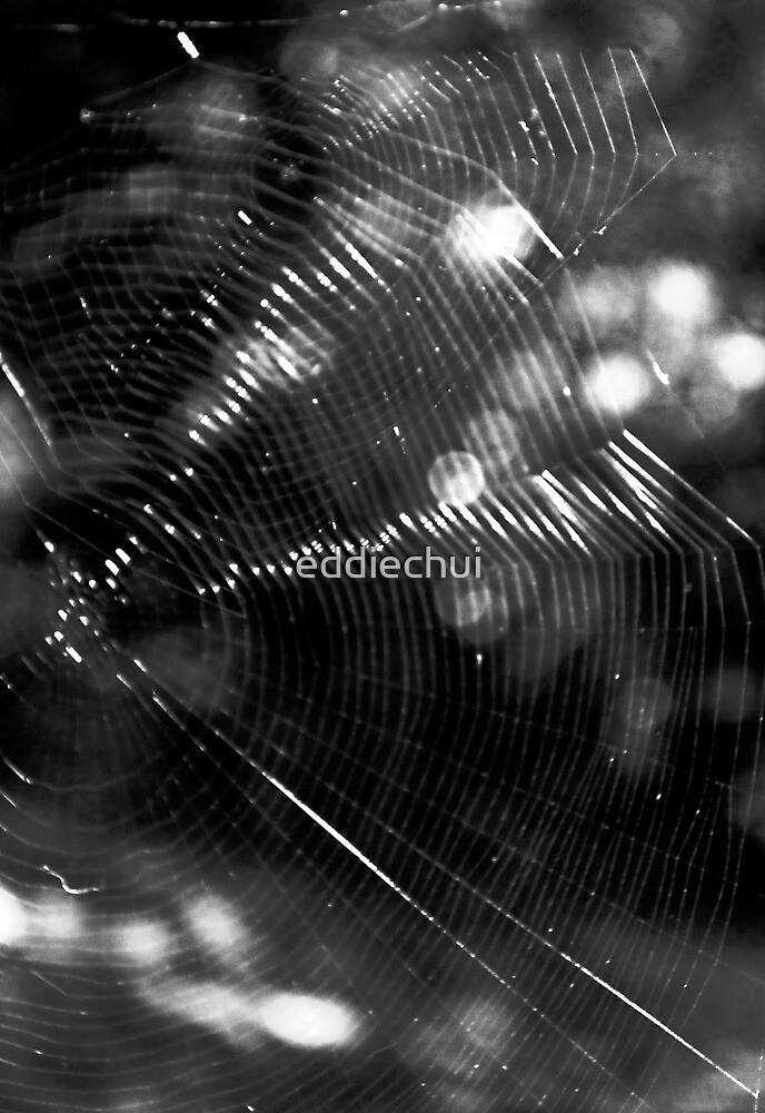 Web on web by eddiechui