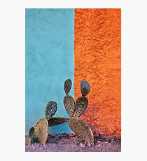 Cactus and colorful wall Photographic Print