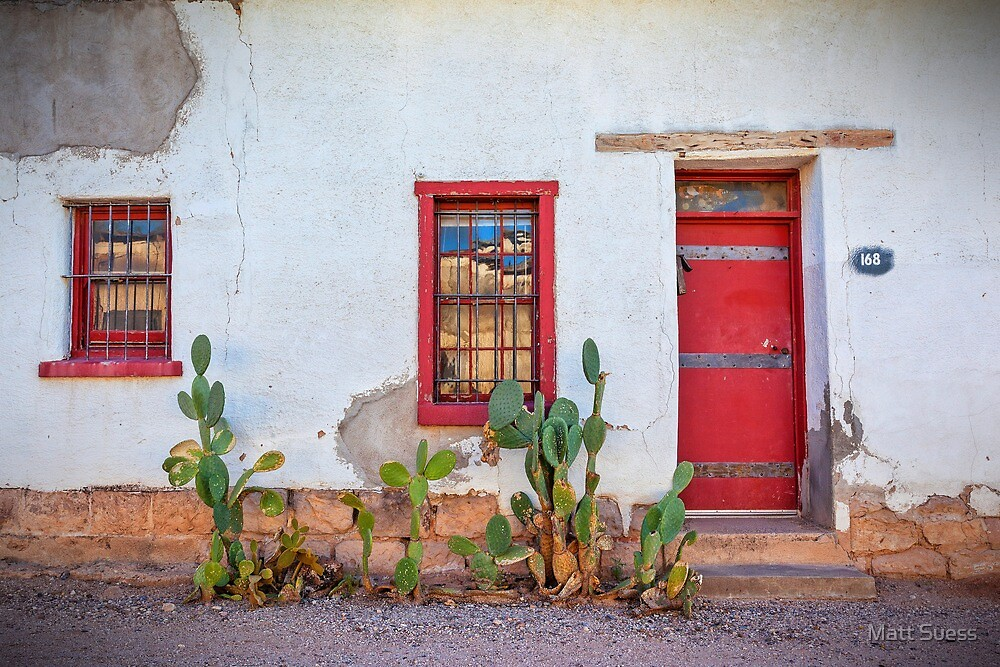 Cactus with red door and windows by Matt Suess