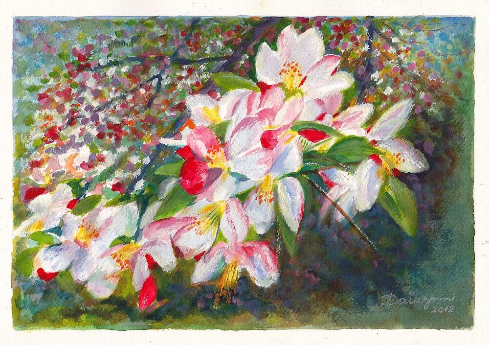 Apple Blossom - Spring in Melbourne Australia by Dai Wynn