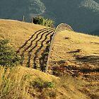 Monterey Hills 2 von Ellen Cotton