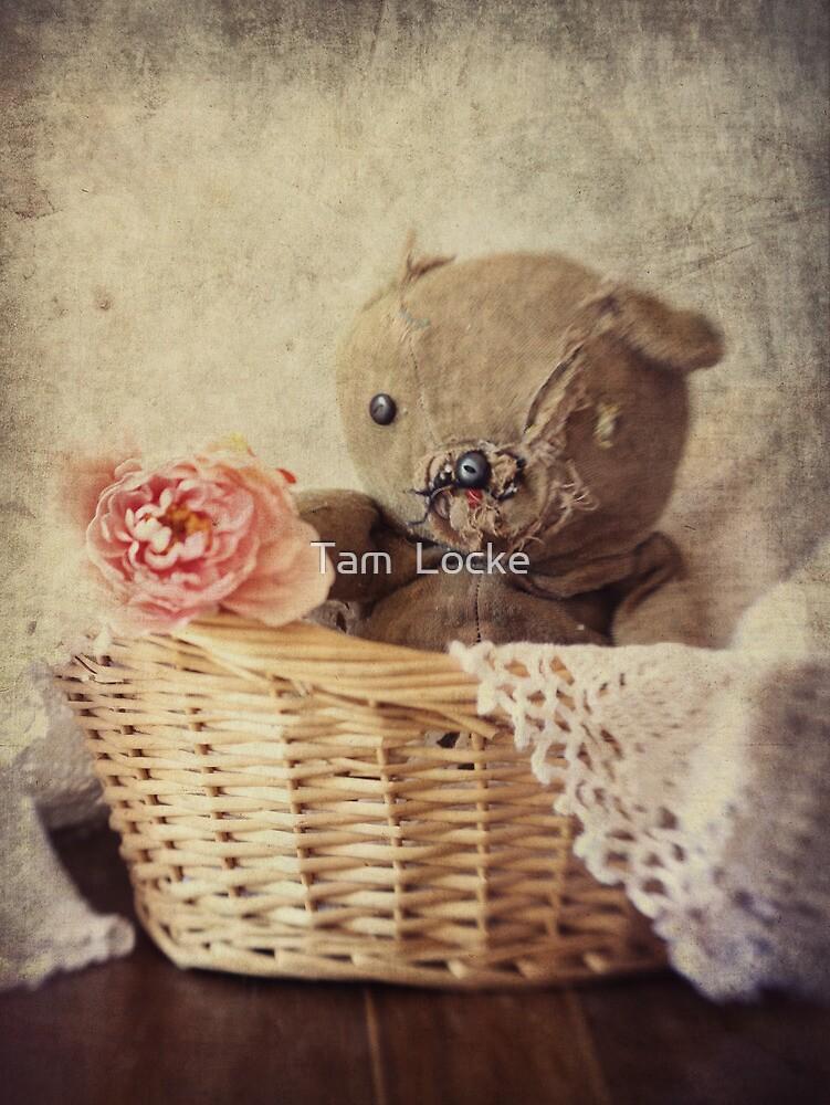 Big Ted by Tam  Locke