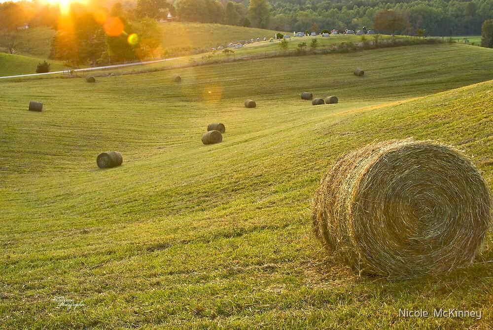 Baling Hay-2 by Nicole  McKinney