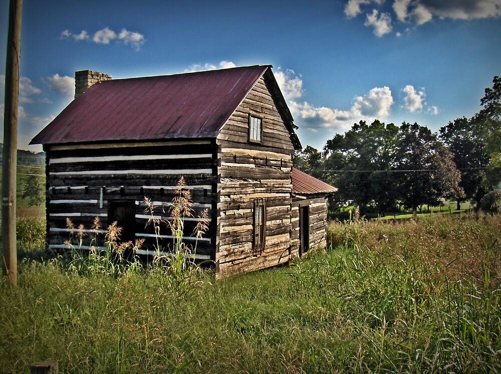 Cabin Of The Field by Paul Lubaczewski