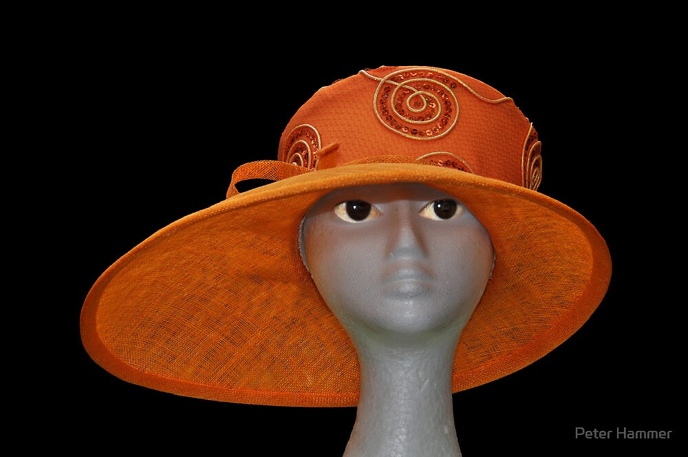 The Orange Hat by Peter Hammer