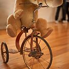 0058 Bear on a Bike by DavidsArt