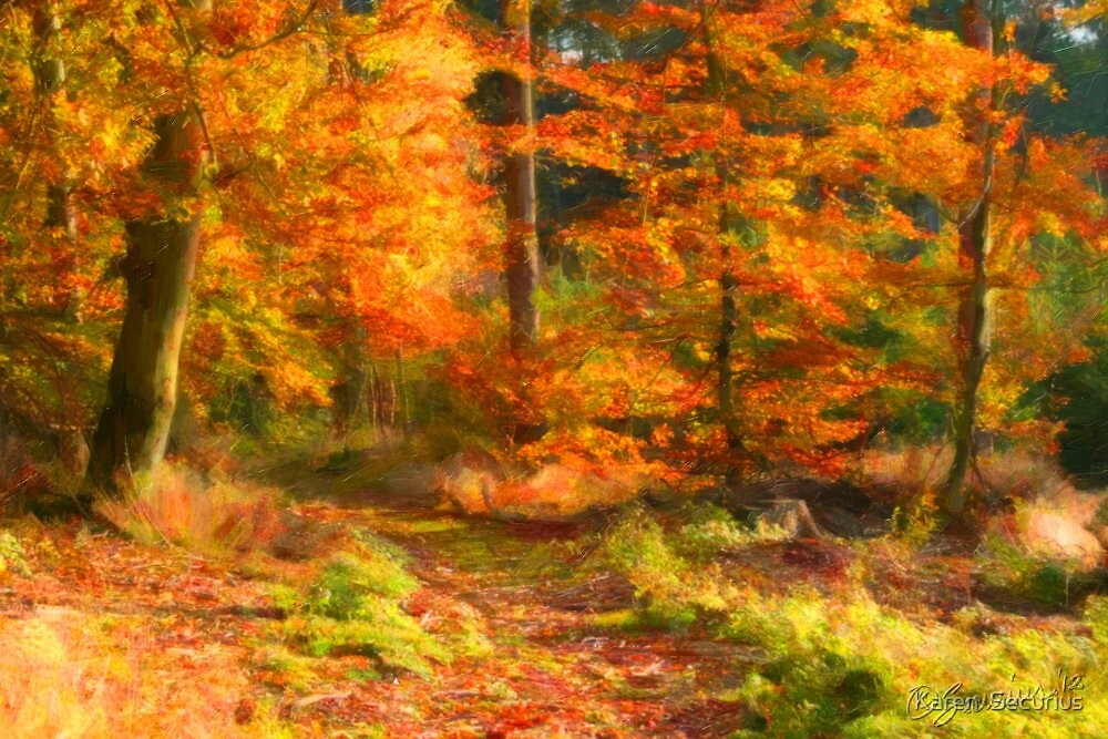 In the forest - Aumuhle oil03 by Karen  Securius