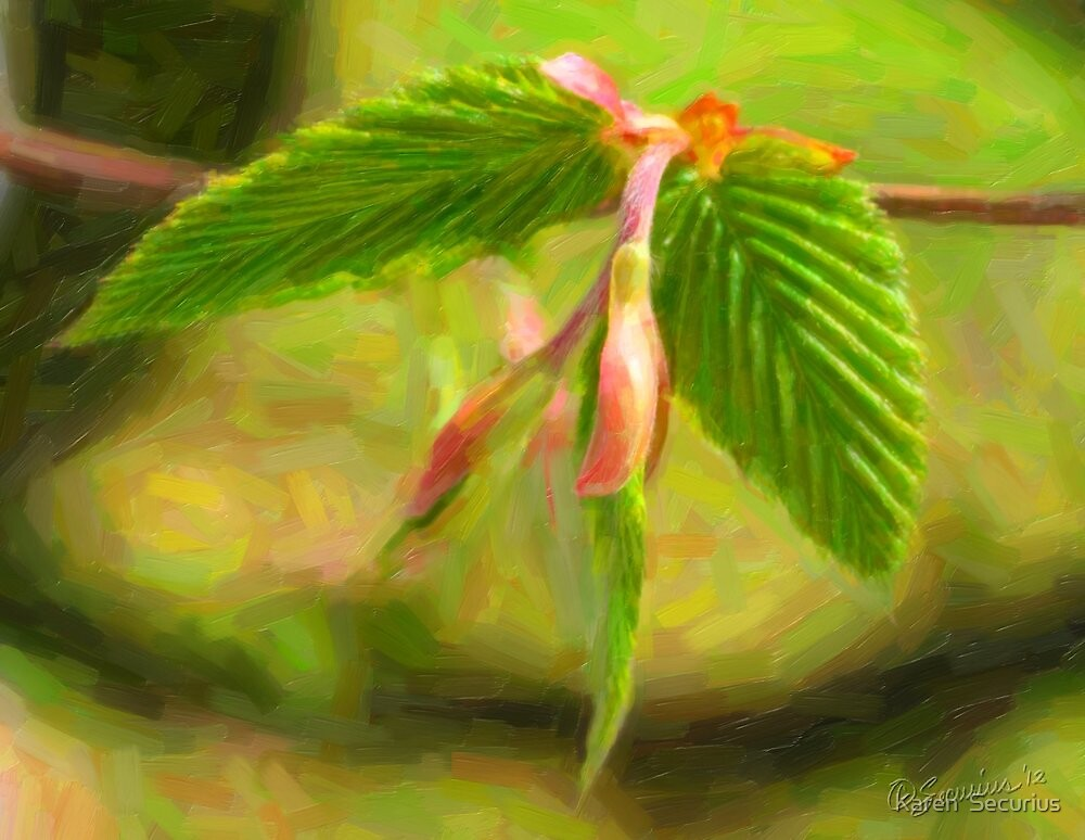 Budding leaf oil02 by Karen  Securius