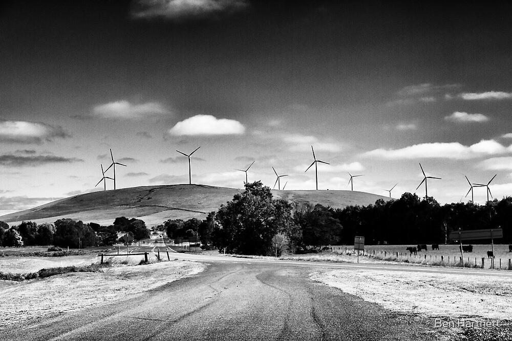 Windfarm  by Ben Hartnett