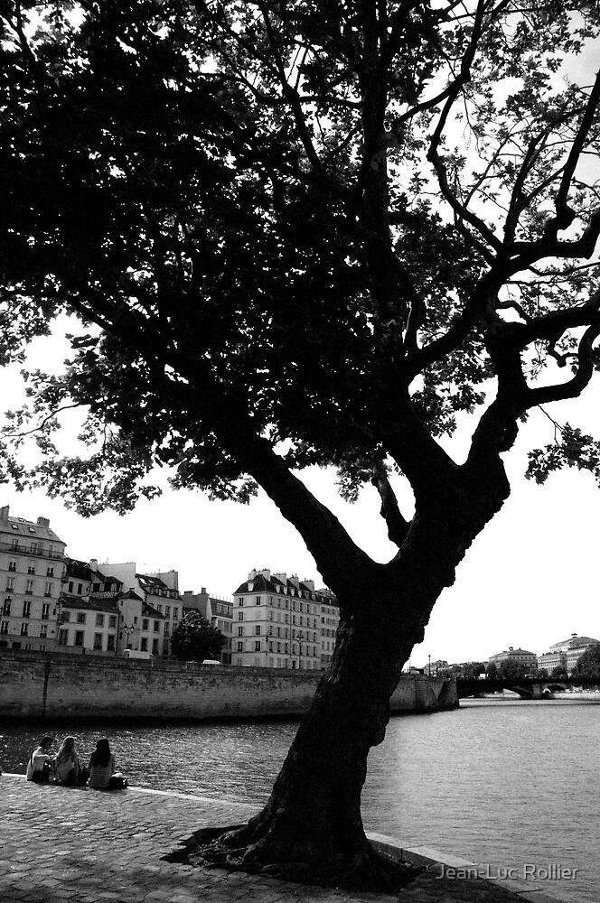 Tree and Three. by Jean-Luc Rollier