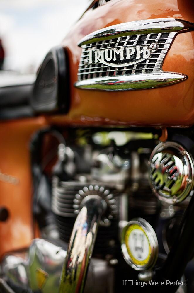 Triumph by Mara Acoma