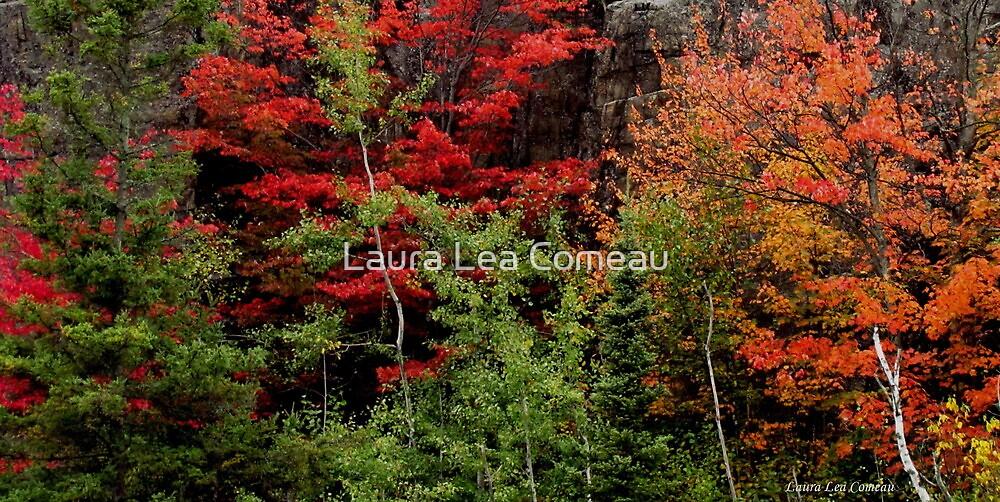Sudbury Ontario Fall Colors by Laura Lea Comeau