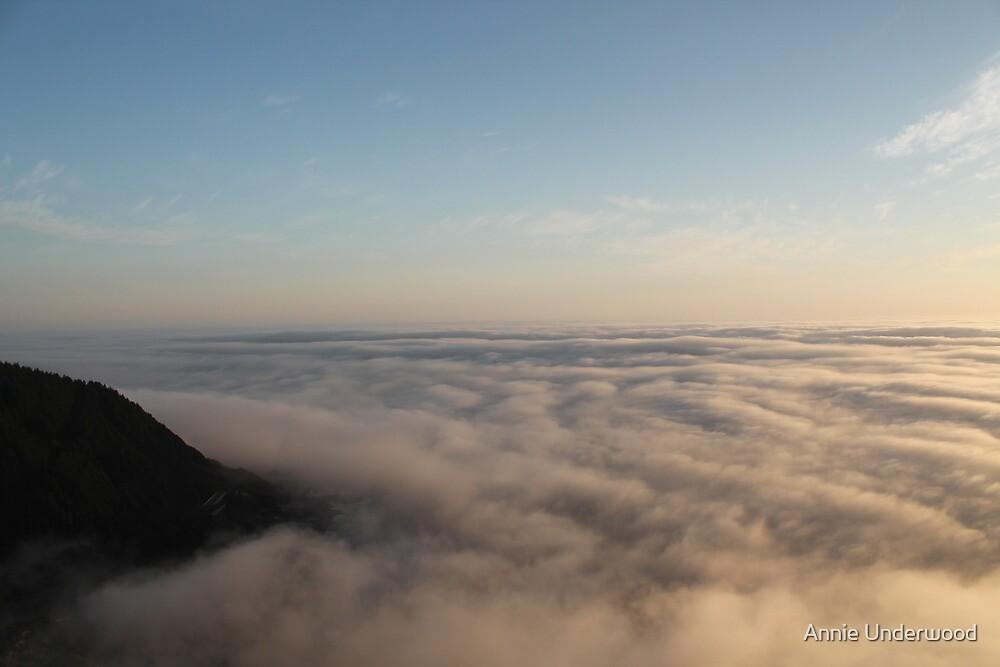 Fog Cover by Annie Underwood