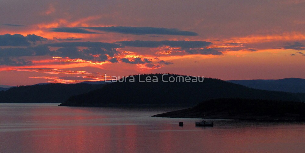 At Last Light by Laura Lea Comeau