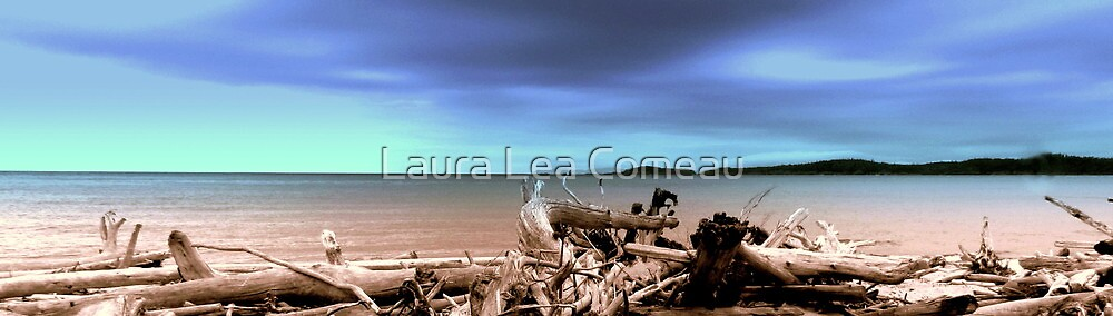 The Bone Yard - North Beach of Pukaskwa National Park Canada by Laura Lea Comeau