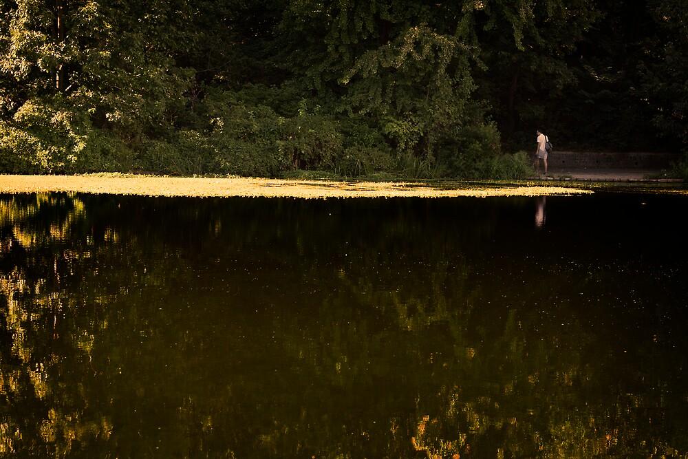 Dark Water by OlgaKas