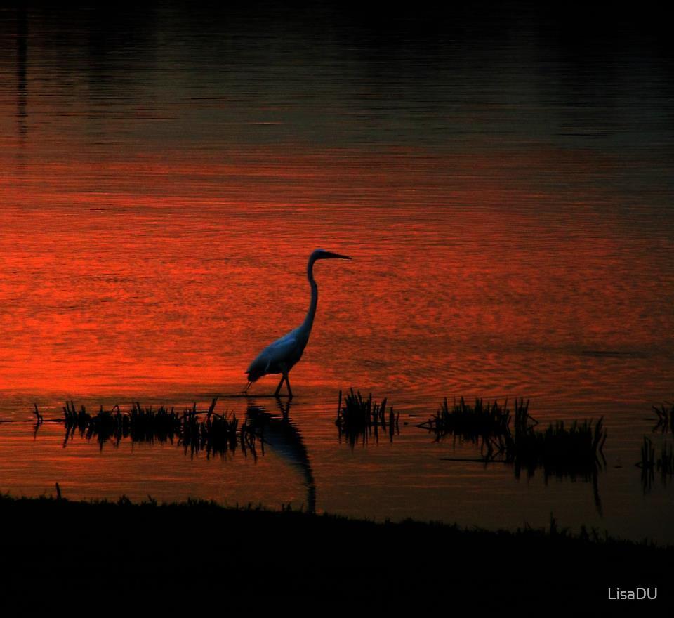 Twilight last gleaming by LisaDU