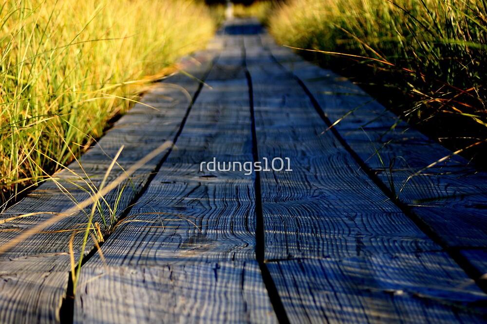 Boardwalk Pathway by rdwngs101