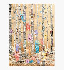 Bugaboo Forest Photographic Print