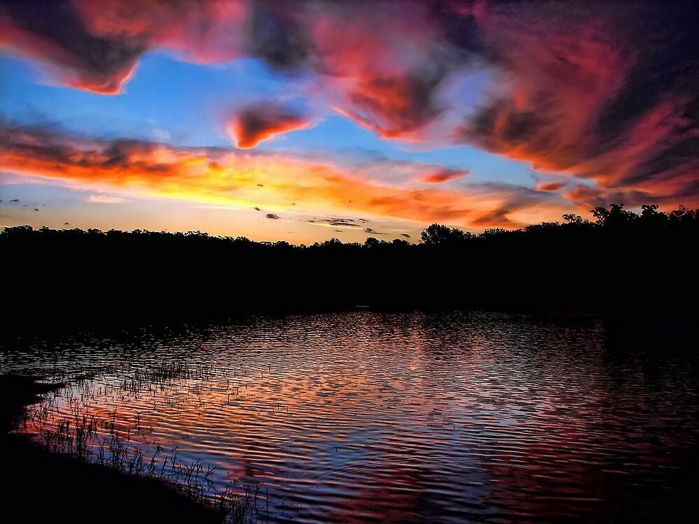 Morning Colors by Carolyn  Fletcher