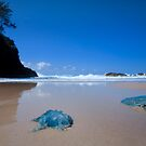 Jellyfish Gorge - North Stradbroke Island Qld Australia by Beth  Wode