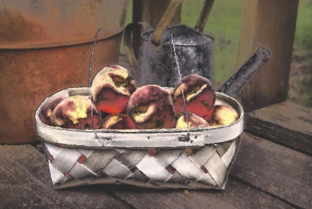 Peaches 2 by Kristine McKay Kinder