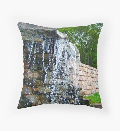 Trickling Waters Throw Pillow