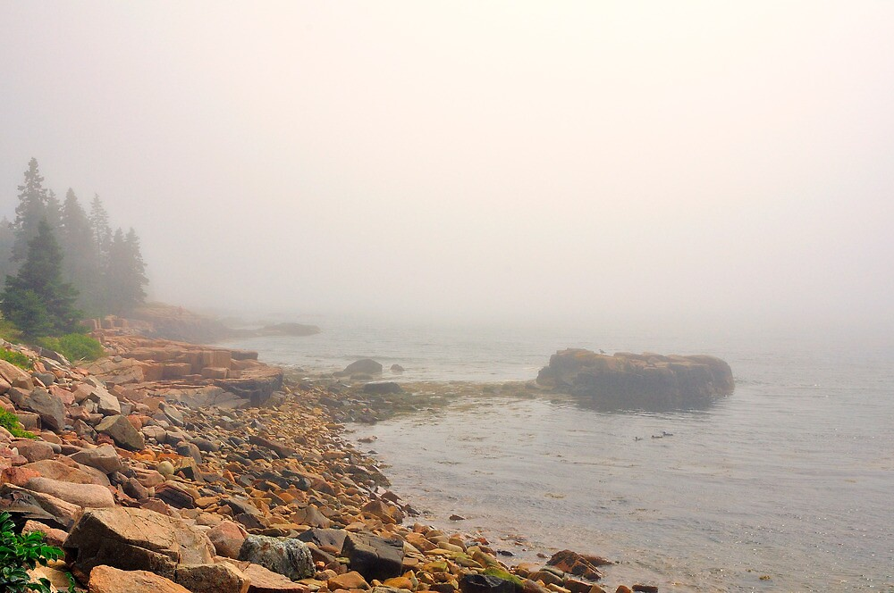 Acadia National Park, Schoodic Peninsula, Maine by fauselr