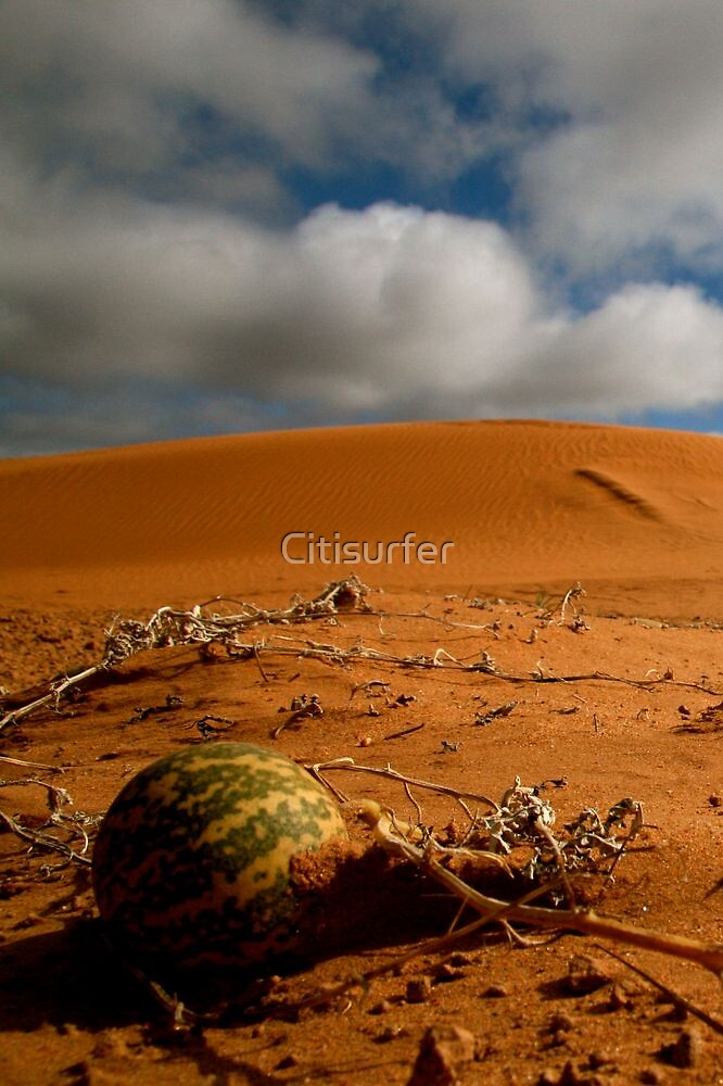 Desert of Melons by Citisurfer