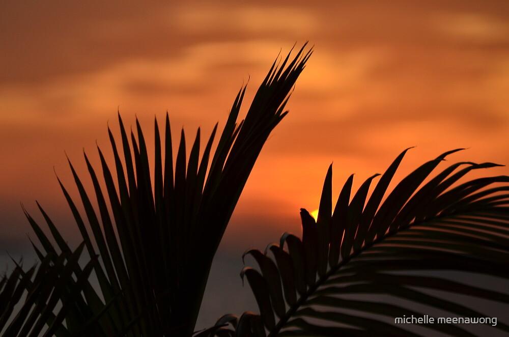 hidden sunset by michelle meenawong