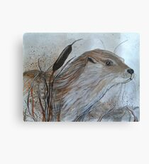 Otter in the reeds Canvas Print