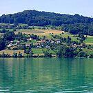 Lake Hallwyl - Switzerland by Daidalos