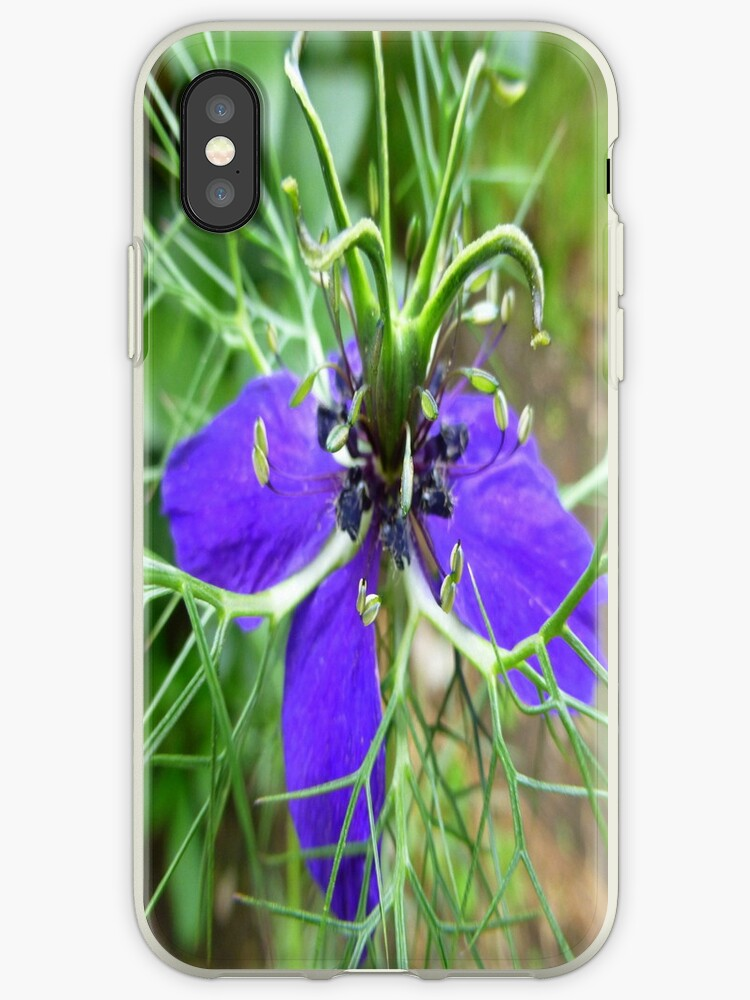 Nigella iPhone Case by Fara