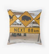 Roadsign Throw Pillow