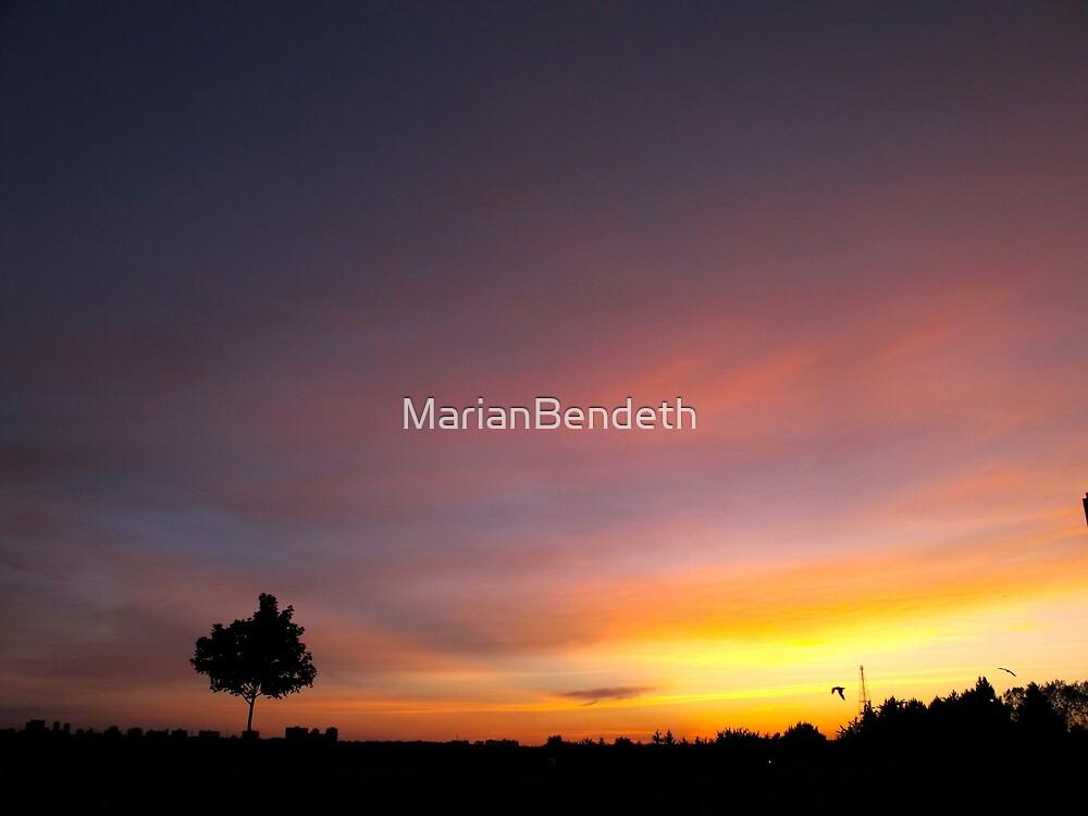 Abandon by MarianBendeth