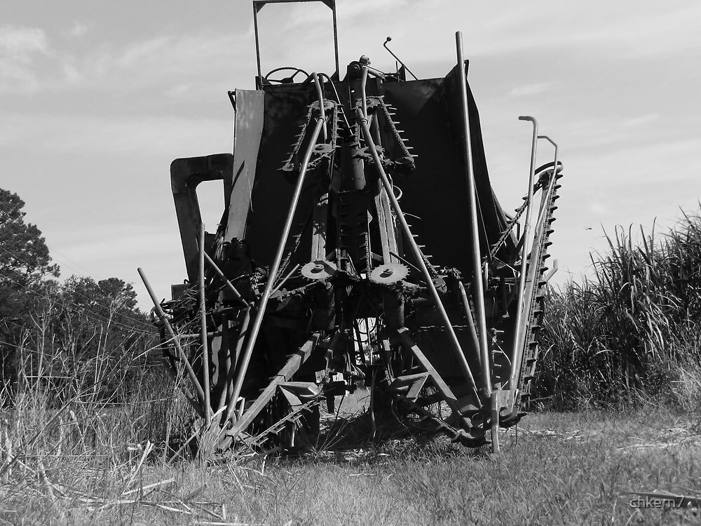 Old sugar cane havester ready for work by chkern7
