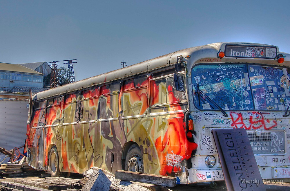 Graffiti Bus by Mandy  Harvey