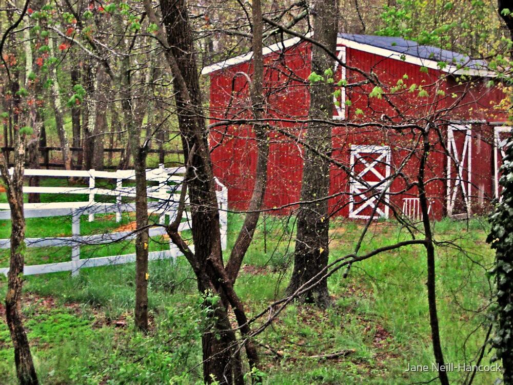The Horse Barn on Gail's Farm by Jane Neill-Hancock