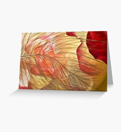 Petal's Womb Greeting Card