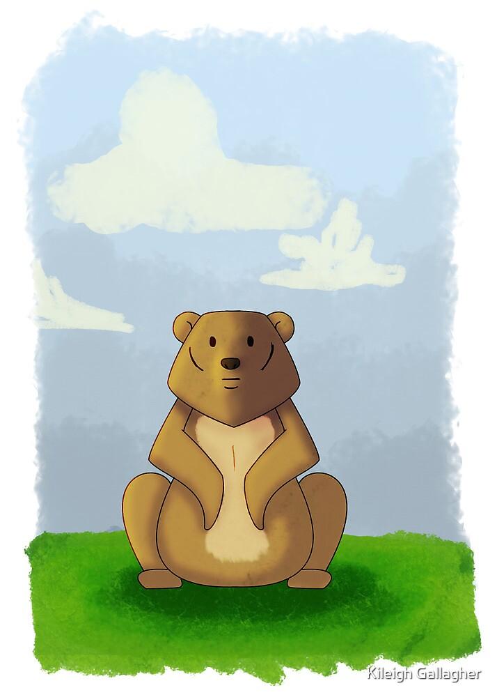 Bear by Kileigh Gallagher