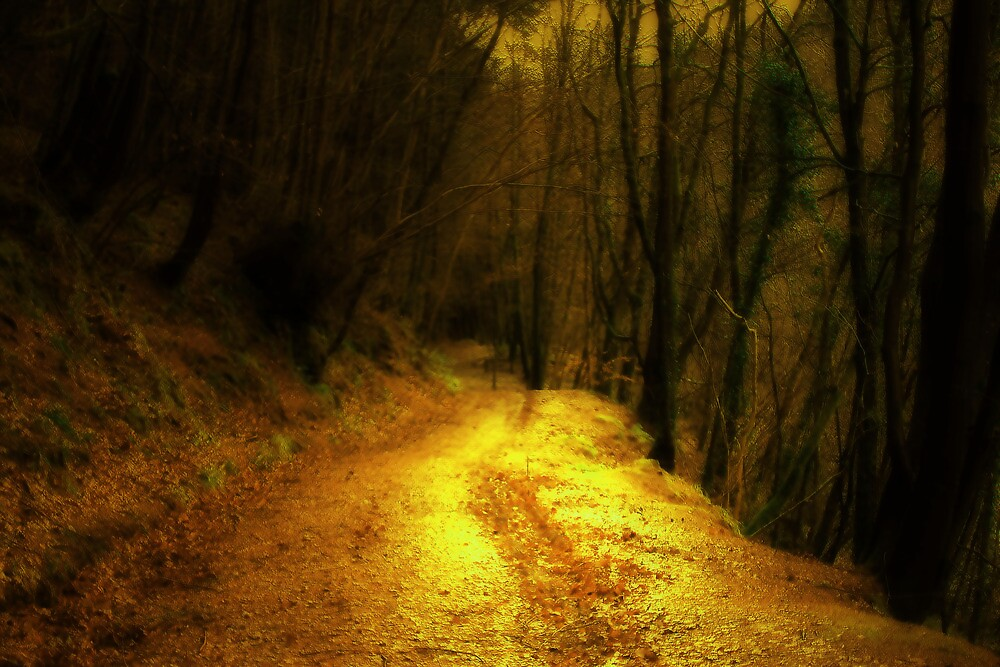 THE PATH WHERE YOUR SOUL STILL WALKS by leonie7