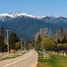 Great Alpine Road by mspfoto