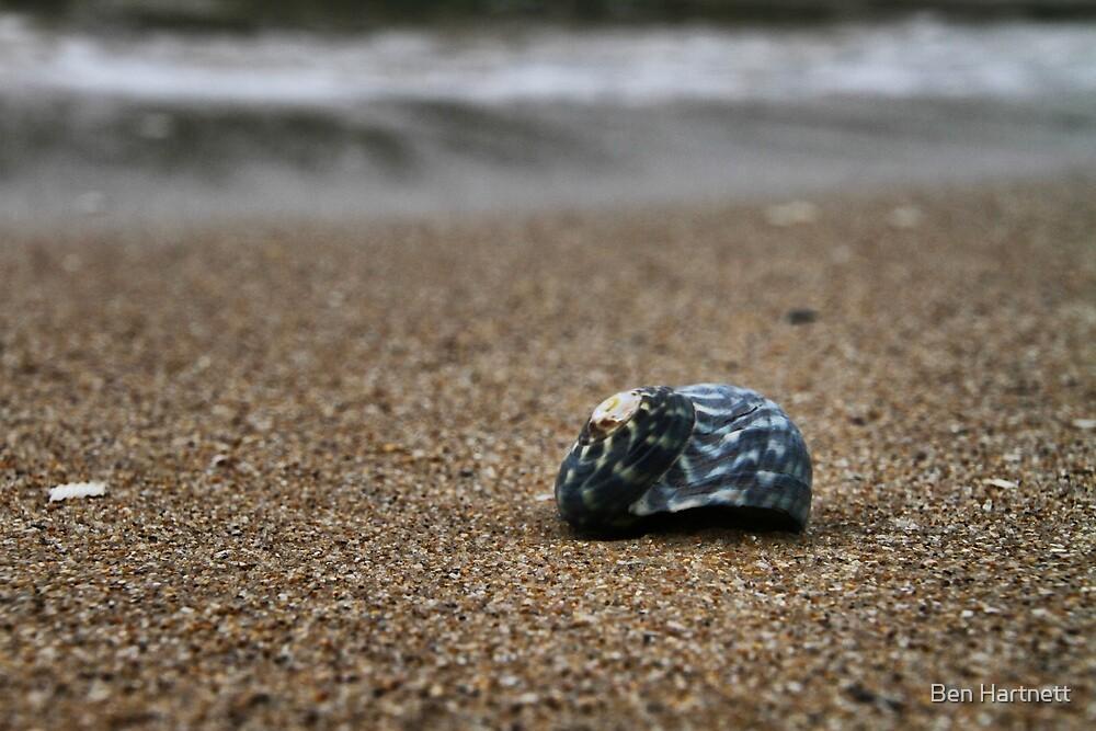 Blue Shell  by Ben Hartnett