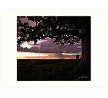 Wet season sunset. Derby, West Kimberley, Western Australia. Art Print