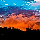 Red sky's at night shepherds delight.. by buddybetsy
