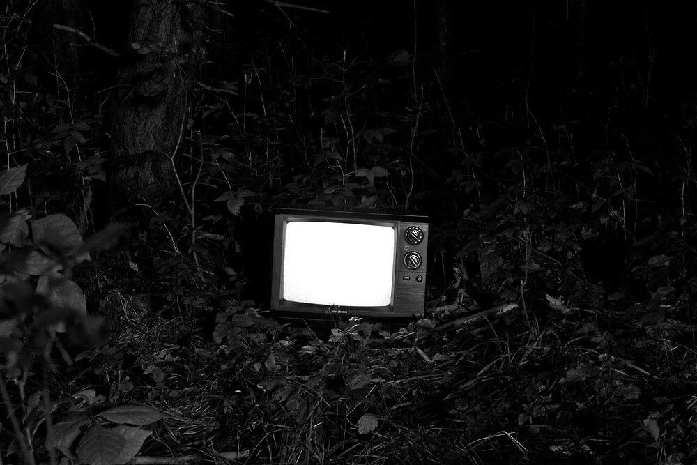 Transmission in the woods  by Cfbphotography