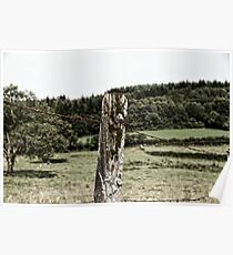 Rural Barbed Wire Poster