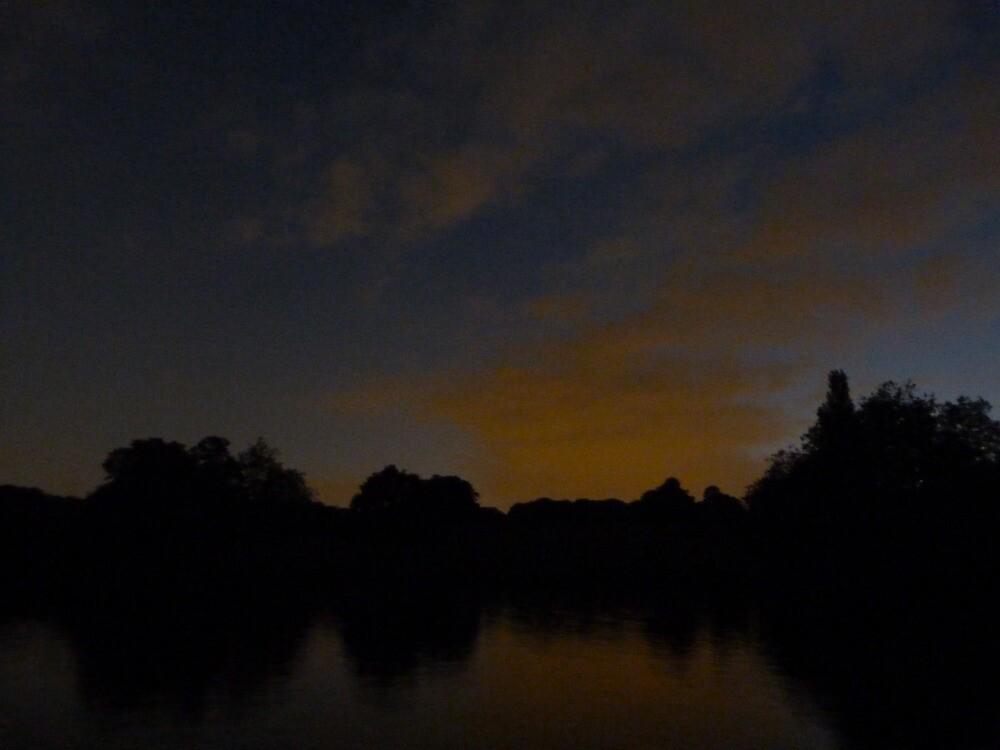 Hampstead Heath at night by davidbloomfield