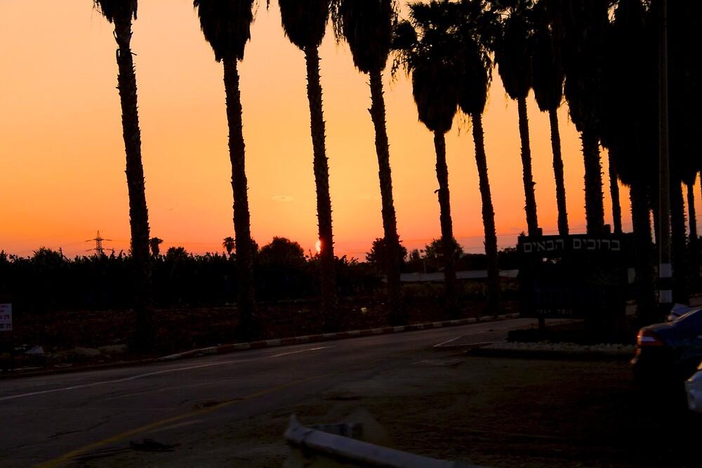 Sunset Israel by Rhanich